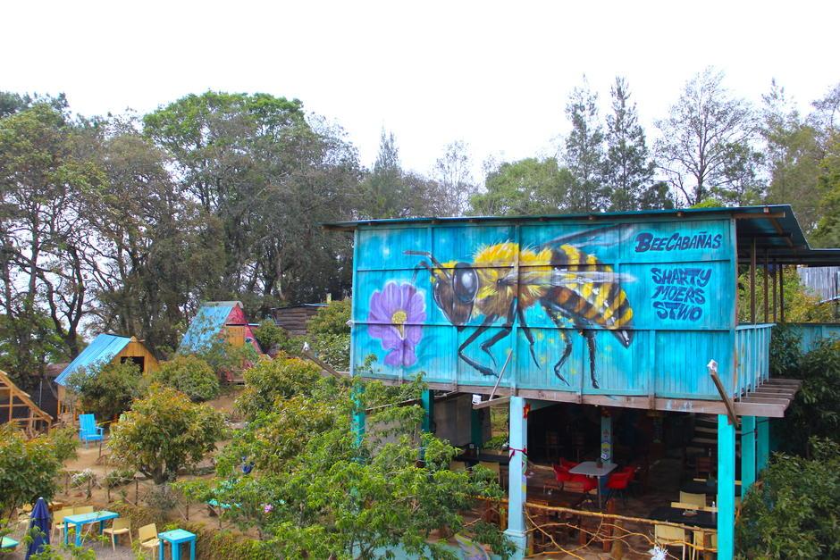 Bee Cabañas está rodeado de rincones coloridos dedicados a la naturaleza. (Foto: Fredy Hernández/Soy502)