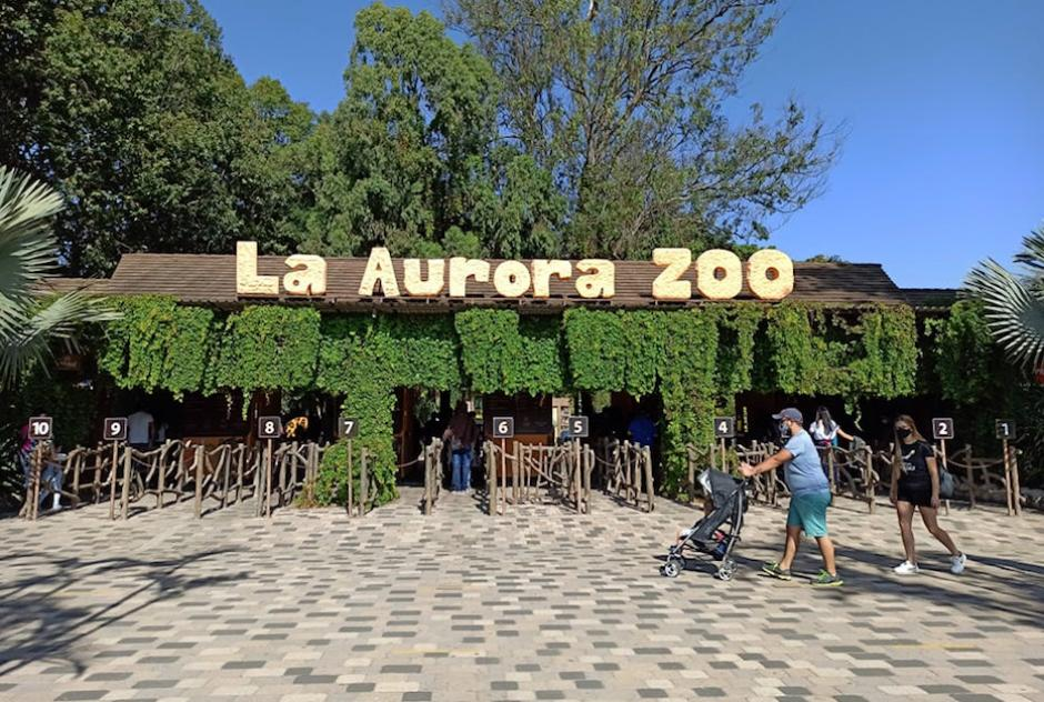Decenas de familias llegaron esta mañana a La Aurora para festejar junto a Trompita y celebrar el Día del Cariño.  (Foto: Wilder López/Soy502)