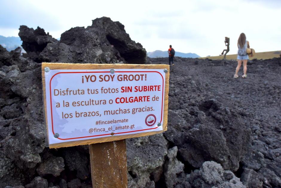 Antes de llegar a la escultura, existe un letrero con las indicaciones para tomarte fotos con Groot. (Foto: Fredy Hernández/Soy502)