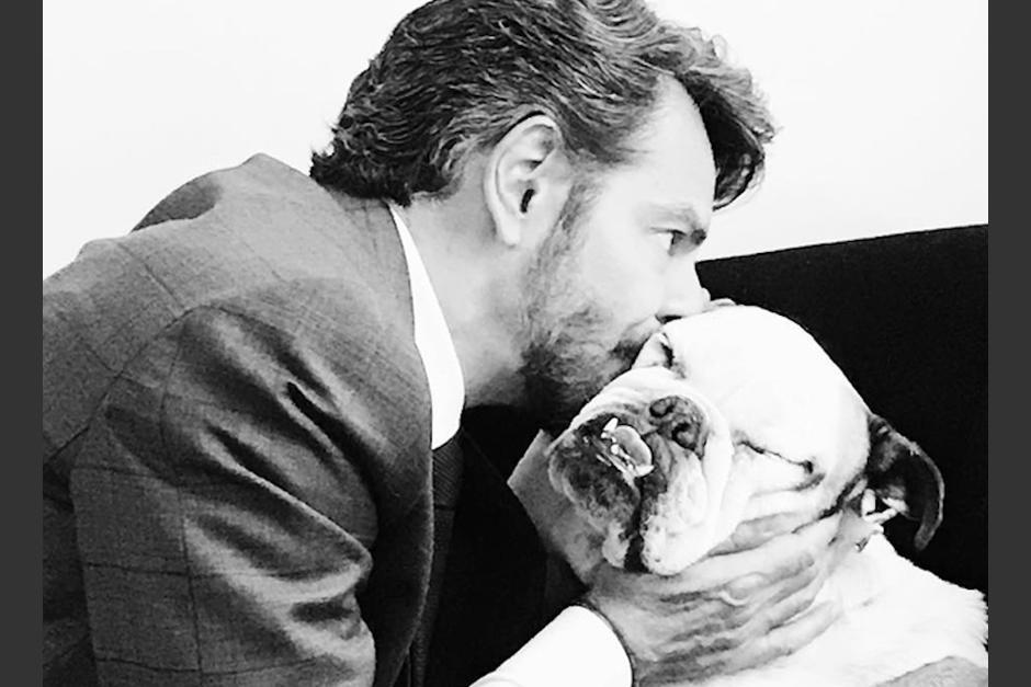 Eugenio Derbez se ha demostrado protector de los derechos animales. (Foto: Us.Hola.com)