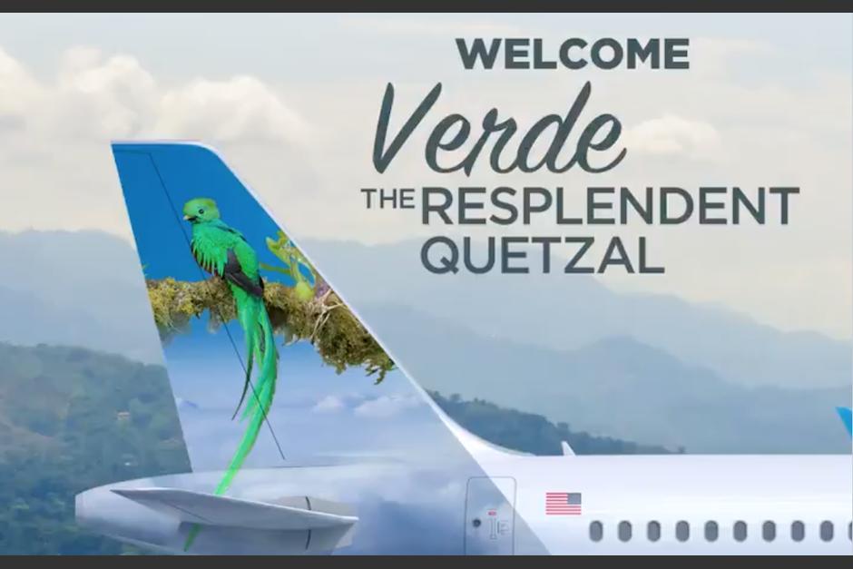.El quetzal ha sido llamado Verde para resaltar por los cielos del mundo. (Foto: Twitter)