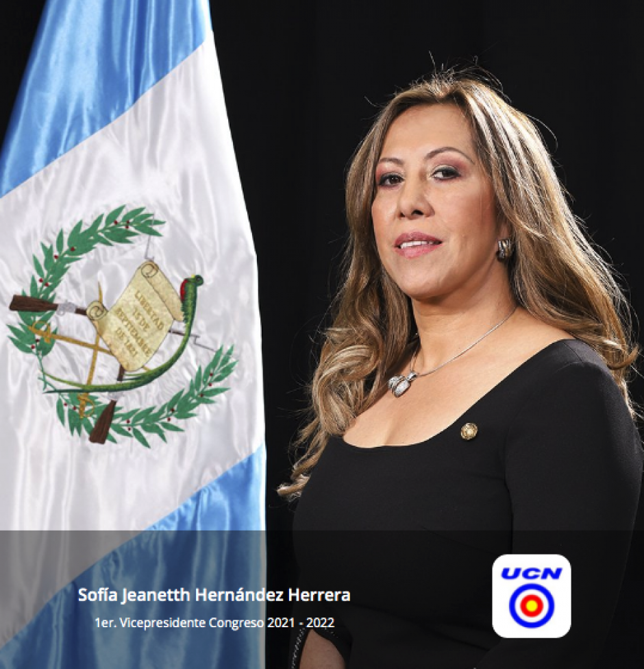Sofía Hernández de UCN, primera vicepresidenta