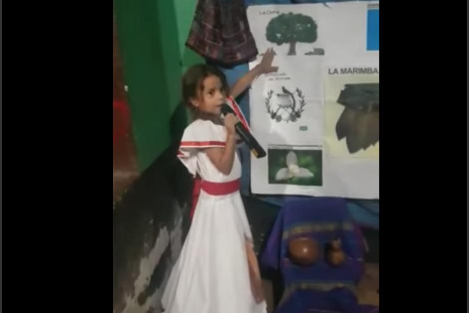 Niña confunde al Quetzal con un perico en su inocencia y nervios al exponer. (Foto: Captura de pantalla)
