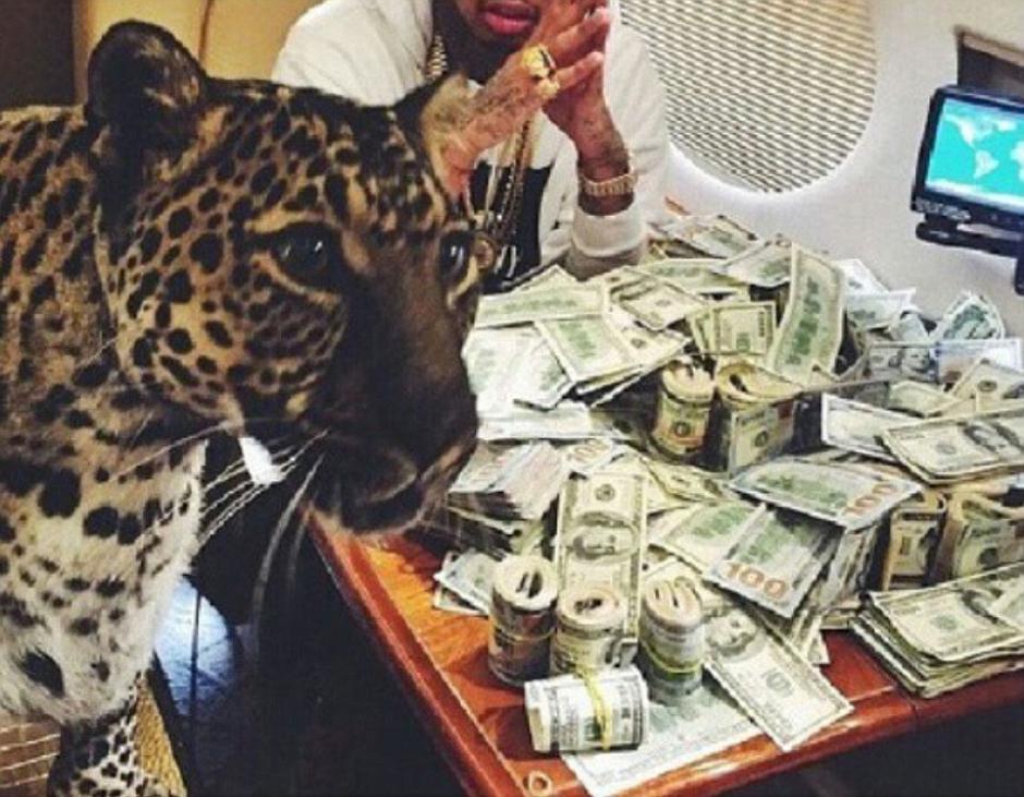 Grandes cantidades de dinero en efectivo y animales salvajes como mascotas, son algunas de las fotografía que comparten los narcos en Instagram.