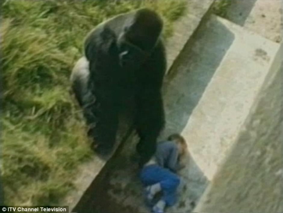 Jambo le acaricia la espalda a Levan Merritt. (Foto: Daily Mail)