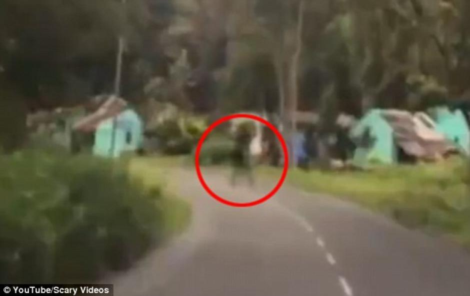 La sobra se escabulle entre los árboles que están en la orilla de la carretera. (Foto: Youtube)