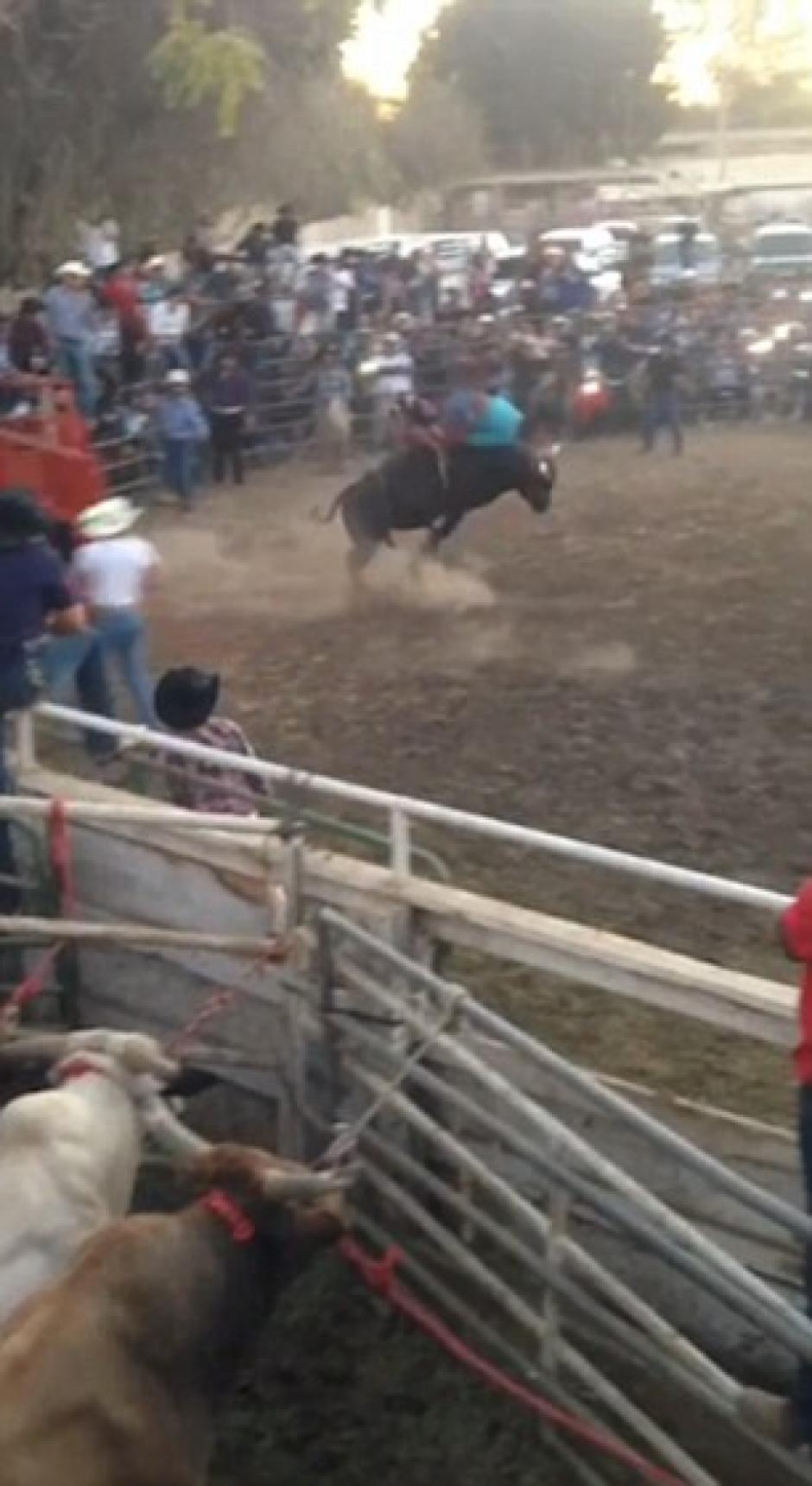 El vaquero fue auxiliado inmediatamente. (Imagen: Captura de pantalla)