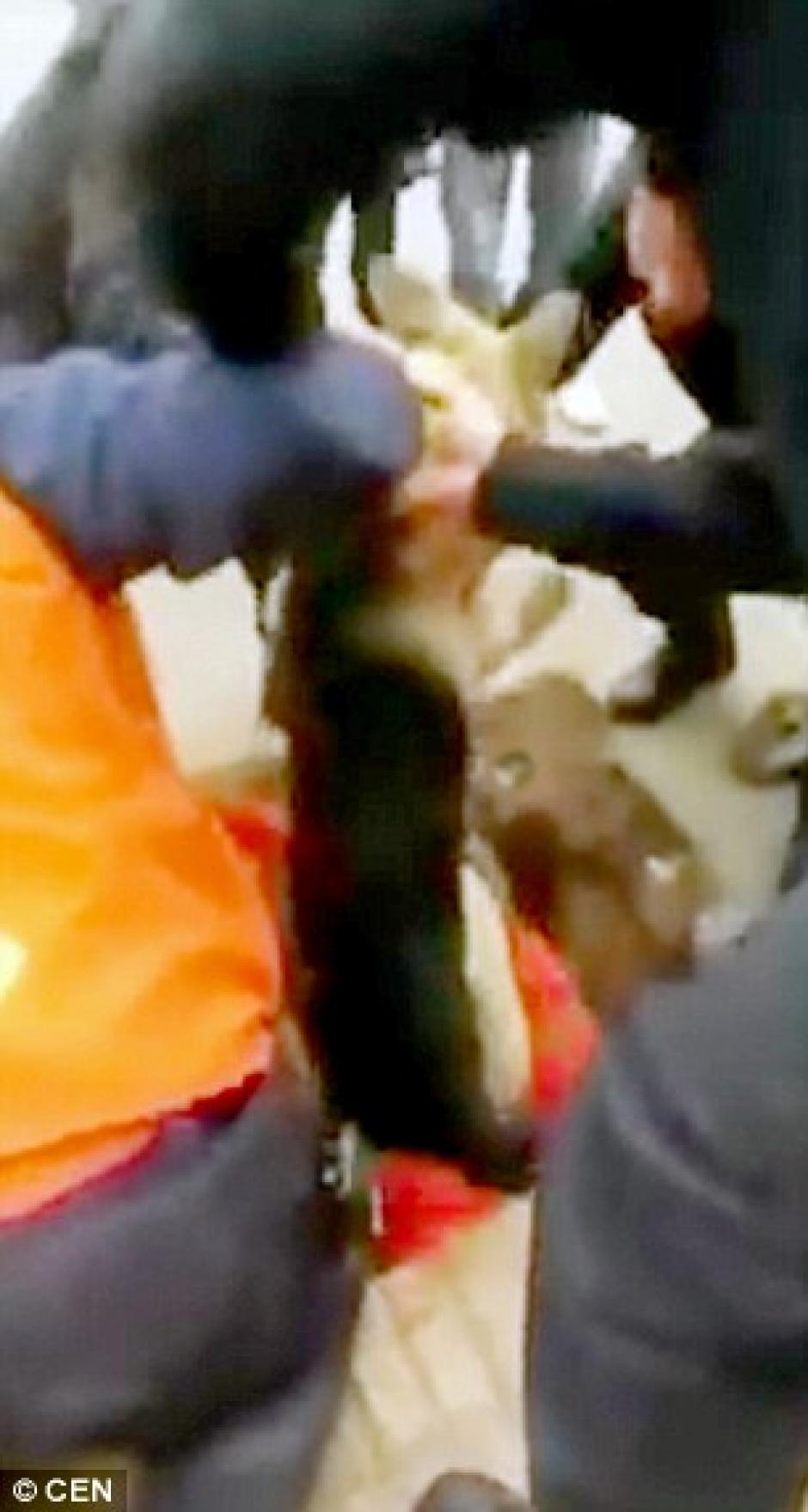 Varias personas participaron en el rescate. (Foto: dailymail.co.uk)