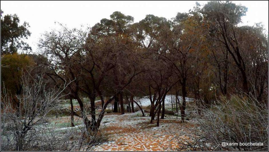 La insólita nevada fue captada por un fotógrafo aficionado. (Foto: Karim Bouchetata)