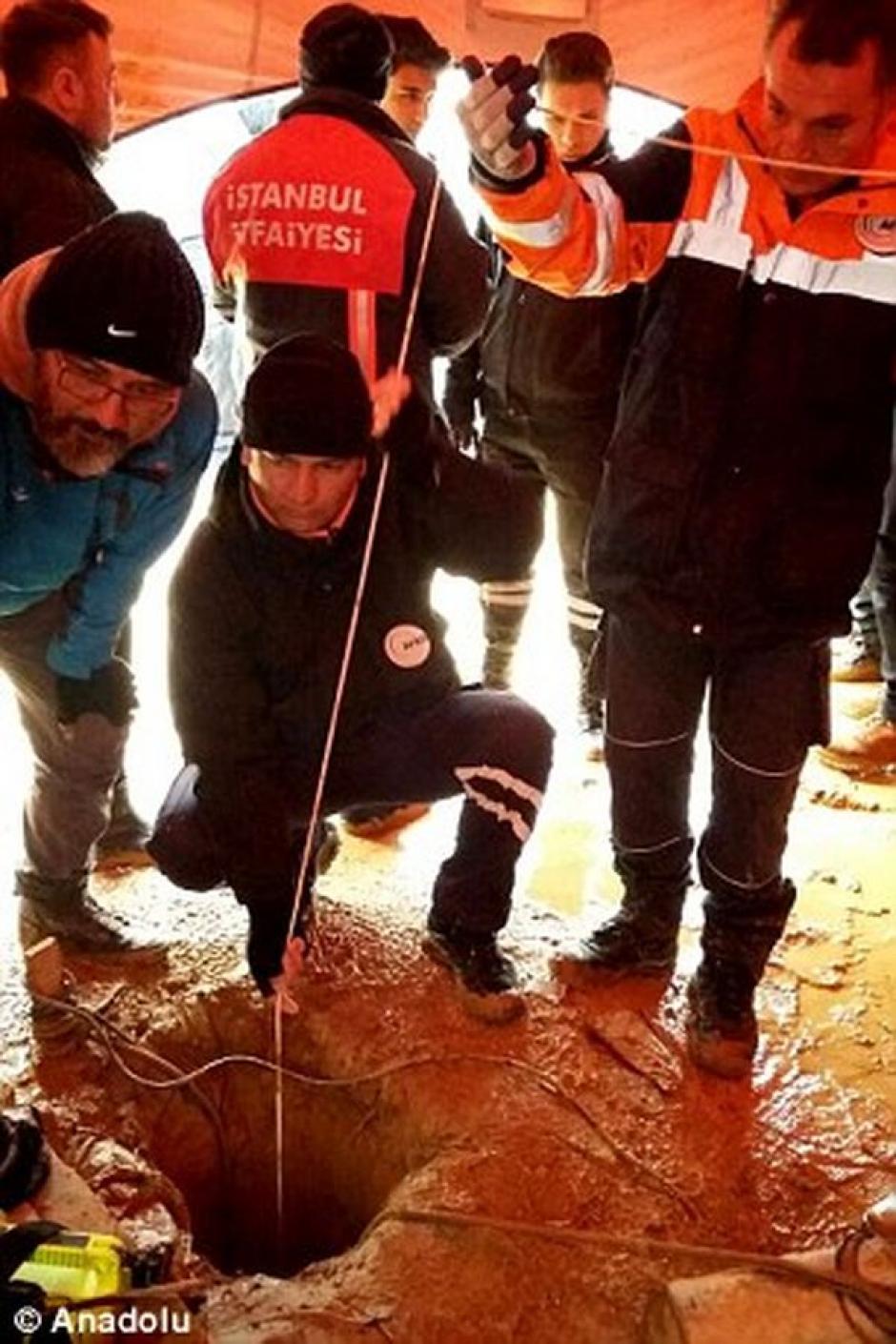 Los rescatistas trabajaron por cuatro días para liberarlo. (Foto: Infobae)