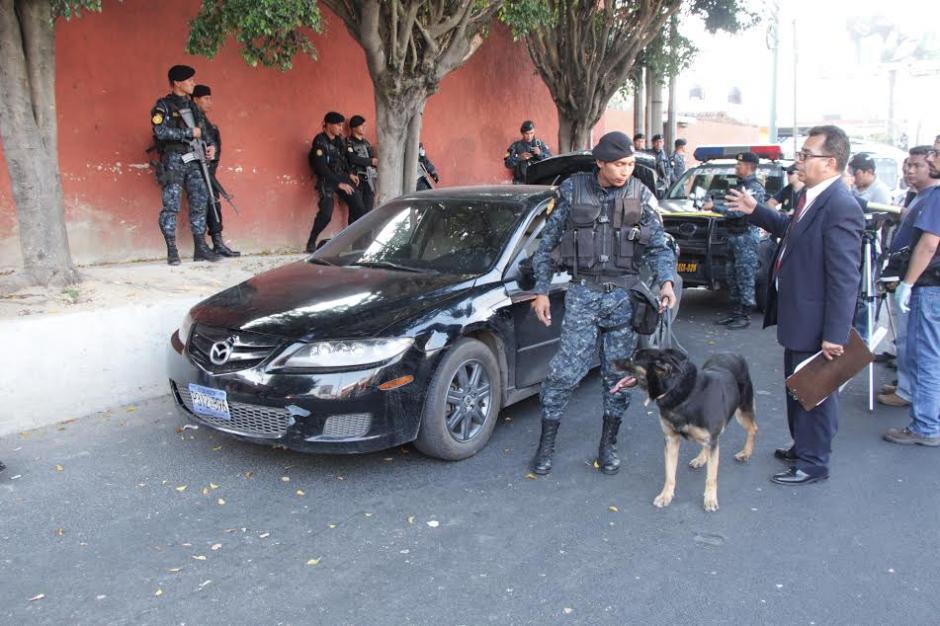 El agente canino Rambo se especializa en la localización de narcóticos, armas y dinero. (Foto: Policía Nacional Civil)