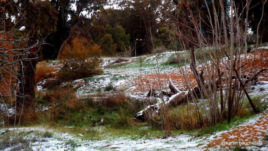 37 años tuvieron que pasar para que nevara de nuevo en el lugar. (Foto: Karim Bouchetata)