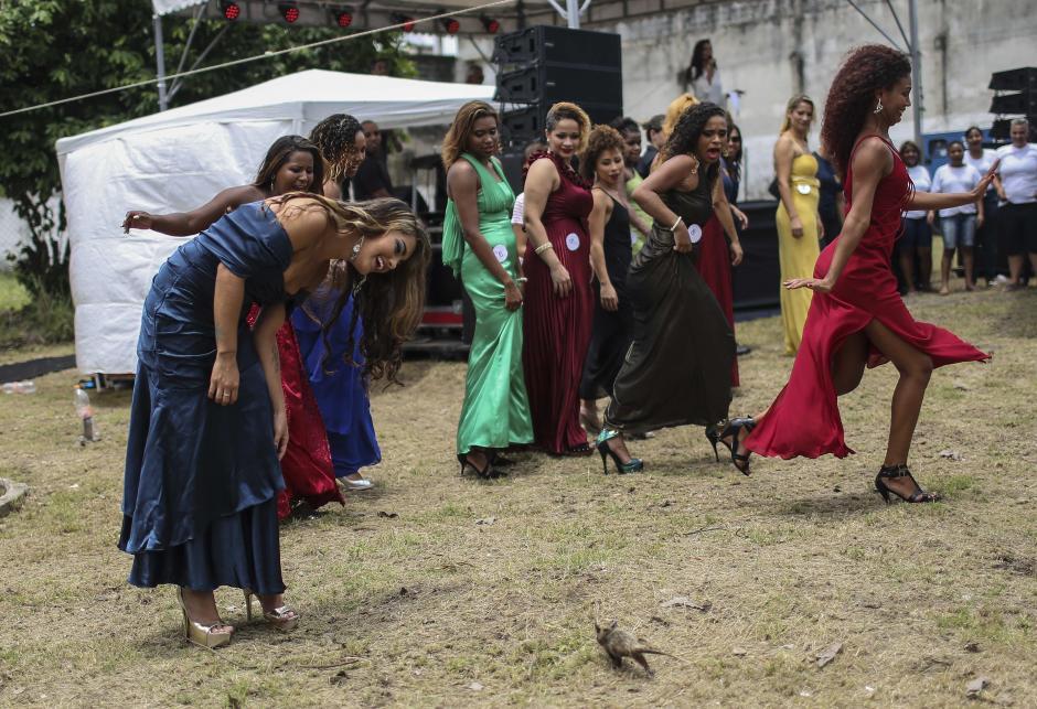 Miss Penitenciaria Brasil 2015. (foto:EFE)