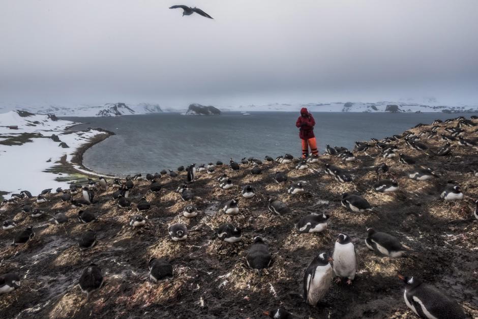 Fotografía de la serie ganadora del primer premio en la categoría Vida cotidiana de la 59 edición del World Press Photo. (Foto: EFE/Daniel Berehulak)