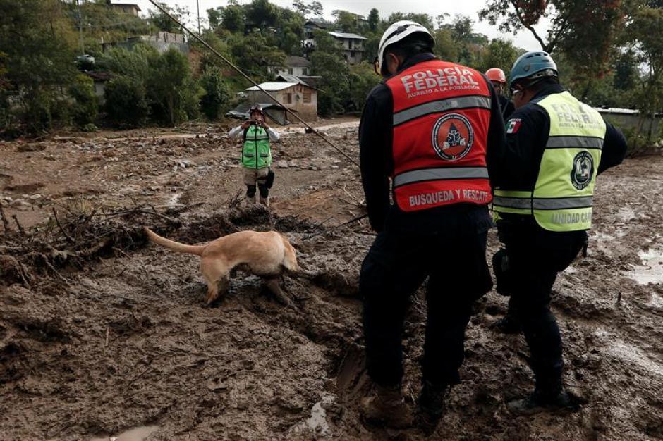 Los bomberos informaron que la niña se aferró a la vida. (Foto: EFE)