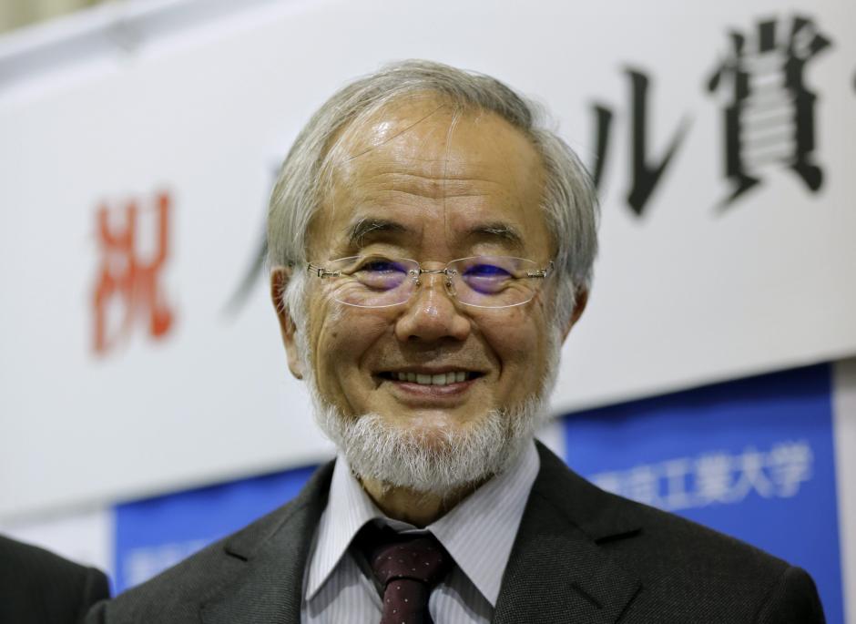 El Nobel de Medicina reconoció este año al japonés Yoshinori Ohsumi. (Foto: EFE)