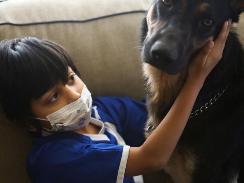 Por ahora, la vida de Cruz se limita a estar recostado en un sofá, con el amor de su familia adoptiva y de su perro, un pastor alemán. (Foto:Alton Strupp/The Courier-Journal)