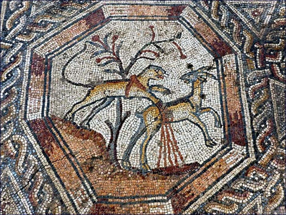 El mosaico está relacionado a actividades de agricultura, caza y pesca. (Foto: gizmodo.com)