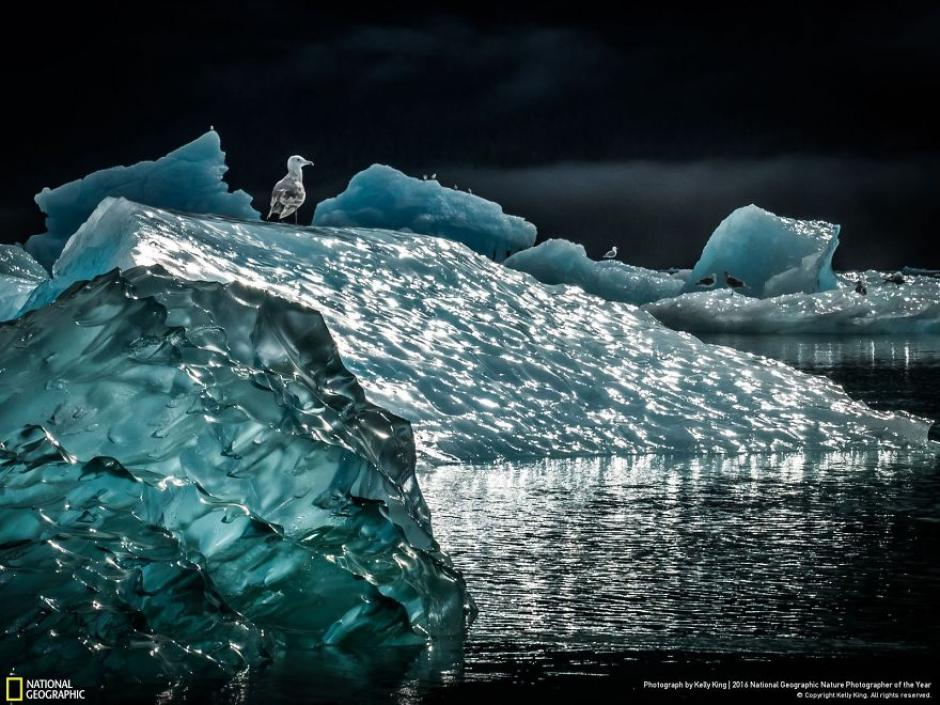 Una vista al paisaje ártico. (Foto: Kelly King/National Geographic)