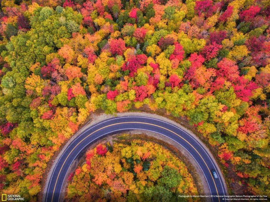 Colorida vista aérea de una autopista durante el otoño en New Hampshire. (Foto: Manish Mamtani/National Geographic)