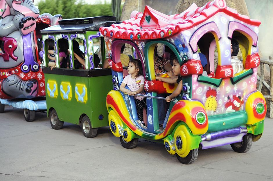 El zoológico diseñó un paseo en tren para que los niños y niñas puedan disfrutar de todo el parque.