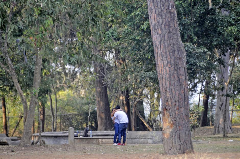 Los parques de la zona 2 se llenan de parejas en las tardes. (Esteban Biba/Soy502)