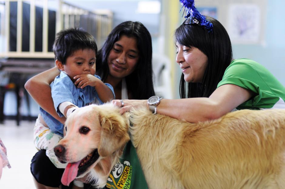 Las mascotas relajan a los niños y padres durante los duros momentos dentro del hospital. (Esteban Biba/Soy502)