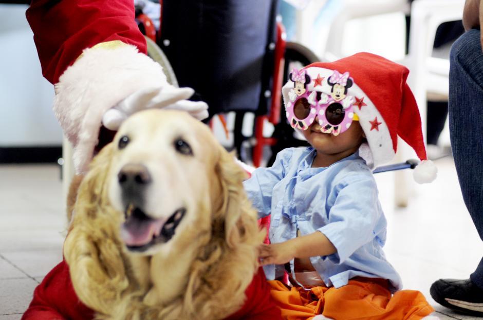La perra Guapa es una de las favoritas de los niños y niñas. (Esteban Biba/Soy502)
