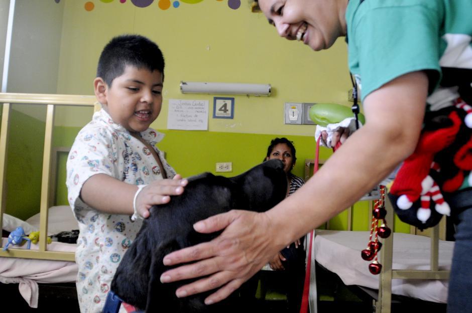 Estudios realizados por médicos del hospital San Juan de Dios indican que los niños mejoran su disposición a tomar medicinas y su recuperación se acelara tras al visitas de las mascotas. (Esteban Biba/Soy502)