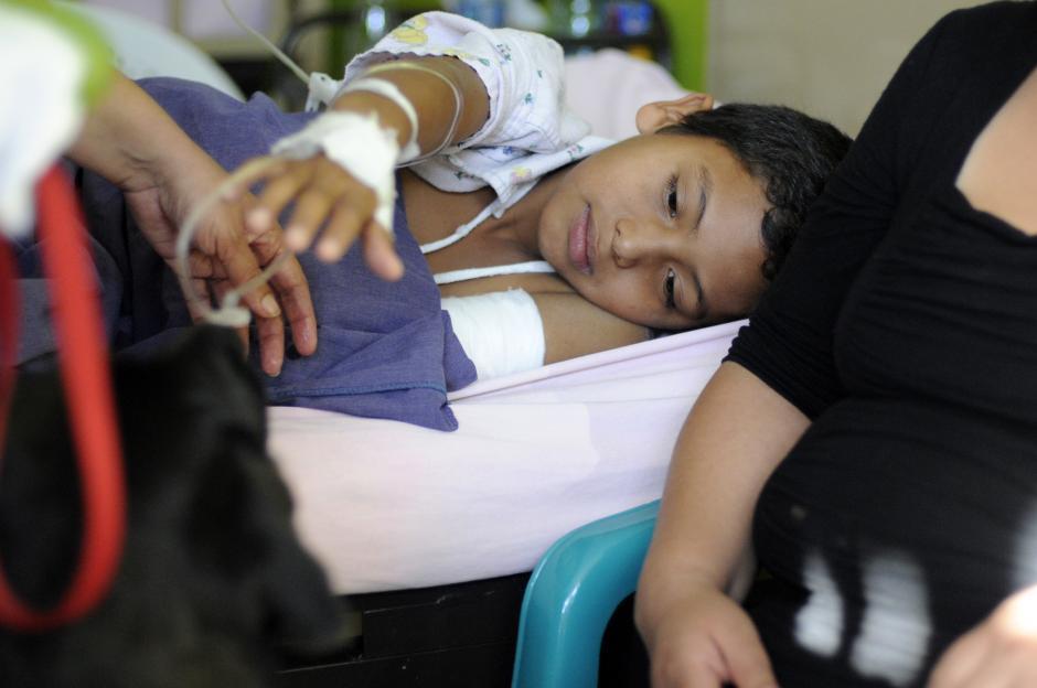 Las mascotas terapeutas realizan dos visitas al mes al hospital a los niños. (Esteban Biba/Soy502)
