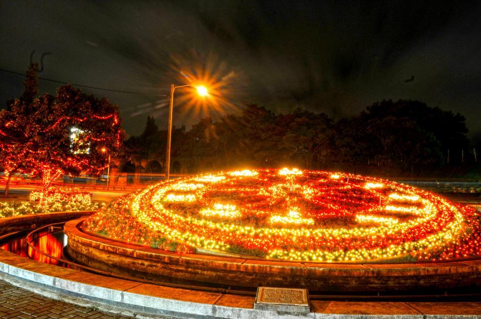 En el bulevard Liberación, el Reloj de Flores y los árboles lucen decorados e iluminan el paso de cientos de vehículos a diario. (Foto: Esteban Biba/Soy502)