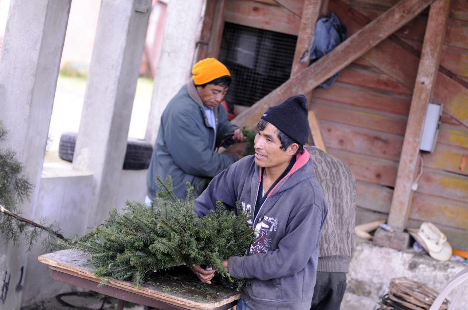 Un artesano prepara una corona navideña con ramillas de pinabete en la Finca Caleras de Chichavac, Tecpán, Chimaltenango. (Foto: Esteban Biba/Soy502)