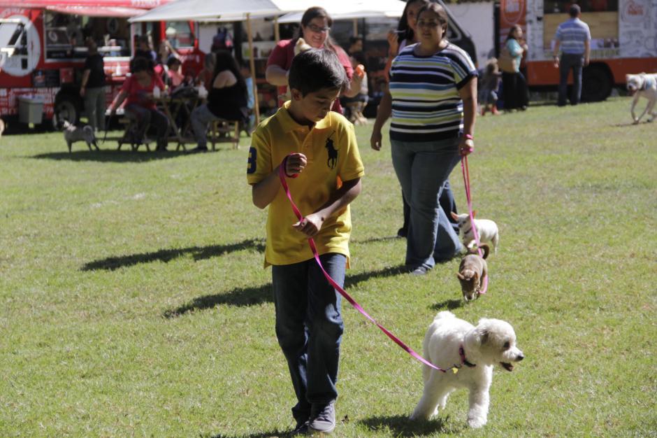 Los niños fueron los más activos para llevar por todas partes a sus mascotas. (Foto: Fredy Hernández/Soy502)