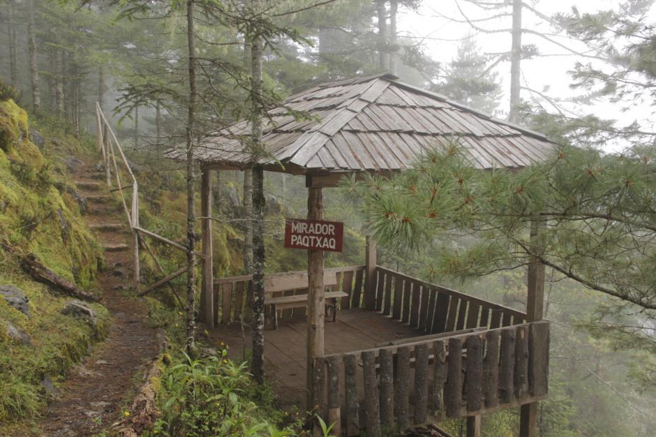 En el sendero Puerta del Cielo puedes disfrutar del aire puro en el bosque nuboso. (Foto: Fredy Hernández/Soy502)