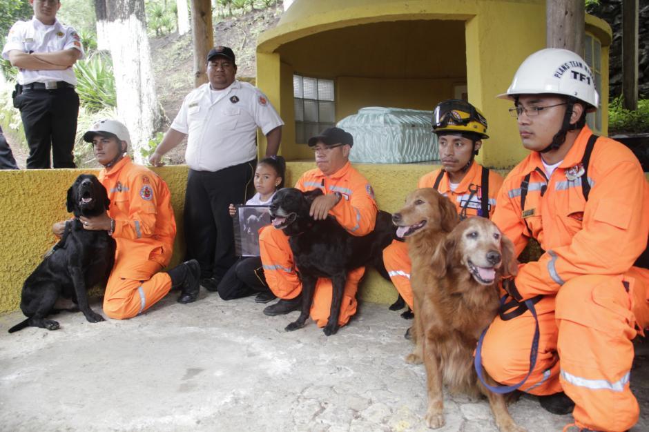 Ya en el cementerio de mascotas, la Unidad Canina se despidió de su líder y agradecieron sus años de servicio.(Foto: Fredy Hernández/Soy502)