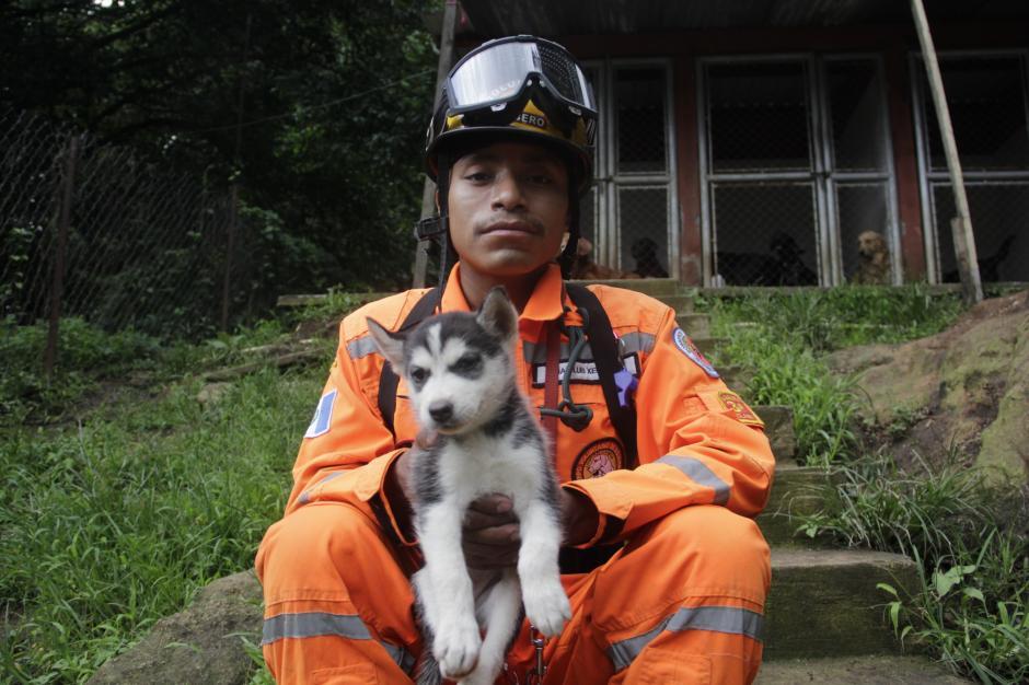 """Luis Xec, Guía Canino, sostiene a """"Llama"""", el nuevo elemento del grupo canino. """"Fuego"""" había sido llevado al veterinario para unos estudios médicos.(Foto: Fredy Hernández/Soy502)"""