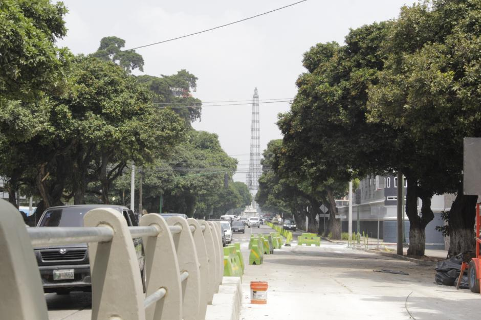 La constructora no cortó un solo árbol que se encontraba cerca del proyecto. (Foto: Fredy Hernández/Soy502)