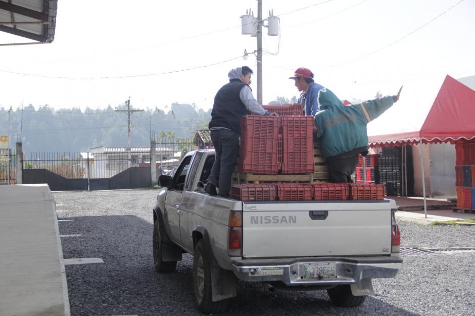 En la actualidad utilizan cajas plásticas para el traslado del producto. (Foto: Fredy Hernández/Soy502)