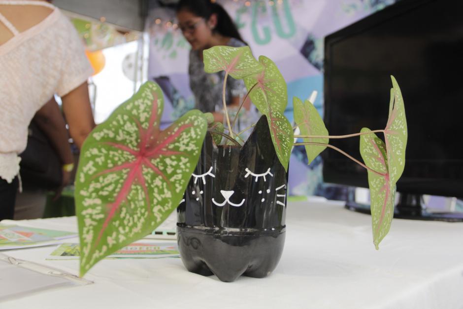 Estas macetas fueron hechas a base de envases de botellas plásticas no retornables y decorados con un estilo particular. (Foto: Fredy Hernández/Soy502)