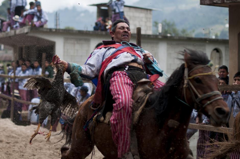 Guatemala: Un jinete cabalga con un gallo en su mano hasta matarlo, durante las celebraciones del día de Todos los Santos en Todos Santos, Huehuetenango. Esta celebración dura tres días, una de las actividades es montar caballos de raza. (Foto: Luis Soto/Revista Contrapoder)