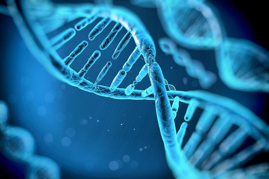 Esta condición depende del ADN, y los que la padecen podrían pasar más tiempo sin arrugas. (Foto: trivia.cibermitanios.ar)