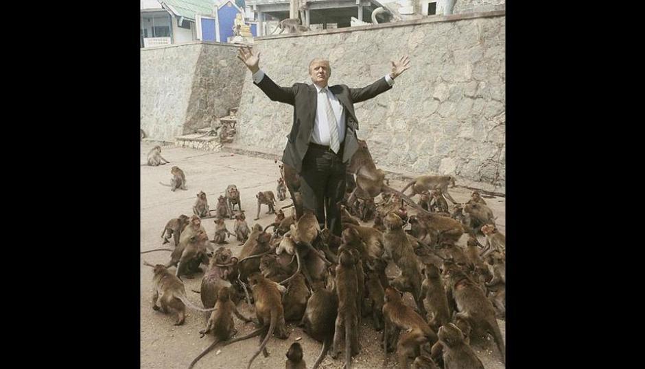 """La imagen de Trump aparece en todos los """"memes"""". (Foto: Perú.com)"""