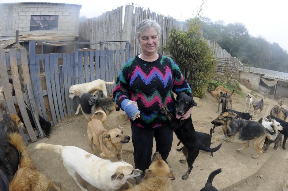 Anaité fundó el refugio Vida Animal en 1996, con el fin de alojar a animaless abusados, abandonados y con necesidades especiales. (Foto: Esteban Biba/Soy502)