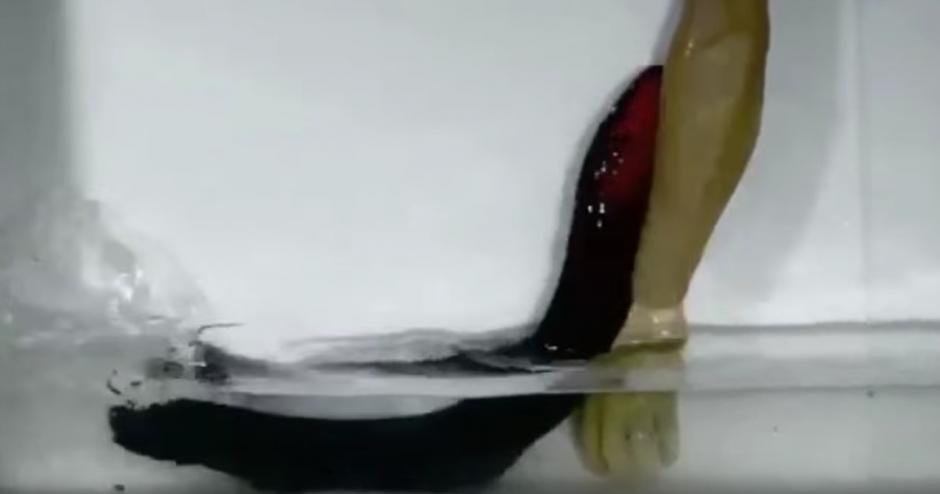 Las anguilas tienen la capacidad de atacar fuera del agua. (Captura de pantalla: SciNews/YouTube)