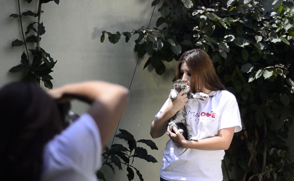 Retrata a personalidades, rescatistas y amantes de los animales para crear conciencia. (Foto: Selene Mejía/Soy502)