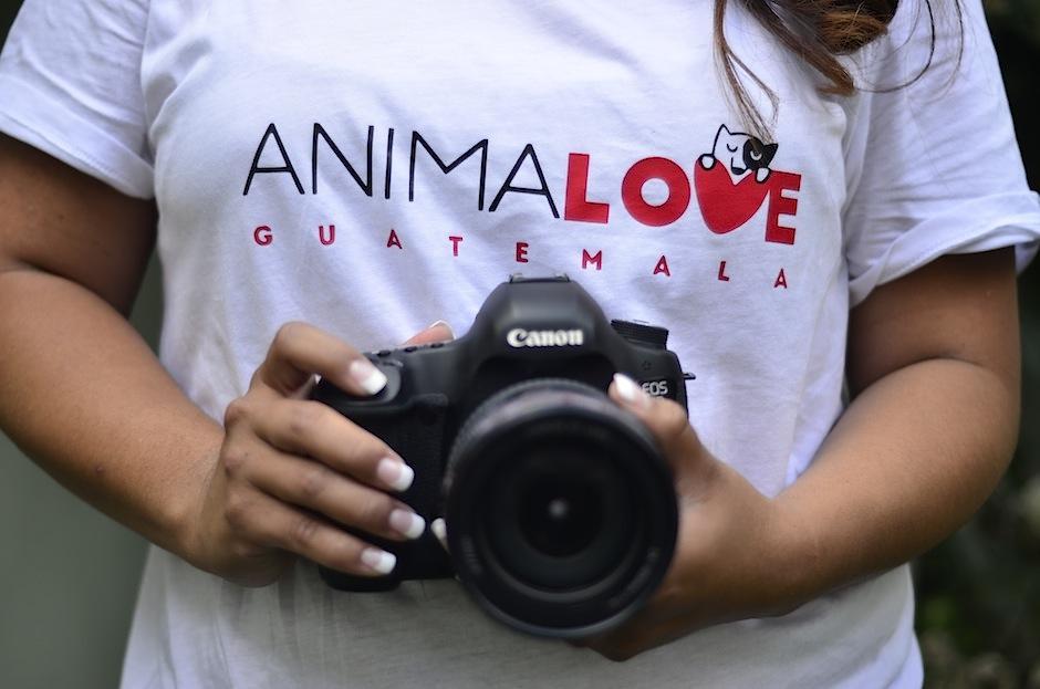 """Conozcan el proyecto """"Animal Love"""" Guatemala. (Foto: Selene mejía/Soy502)"""