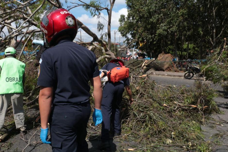 Para retirarlo fue necesario que 20 empleados municipales trabajaran en el lugar.  (Foto: Amílcar Montejo)