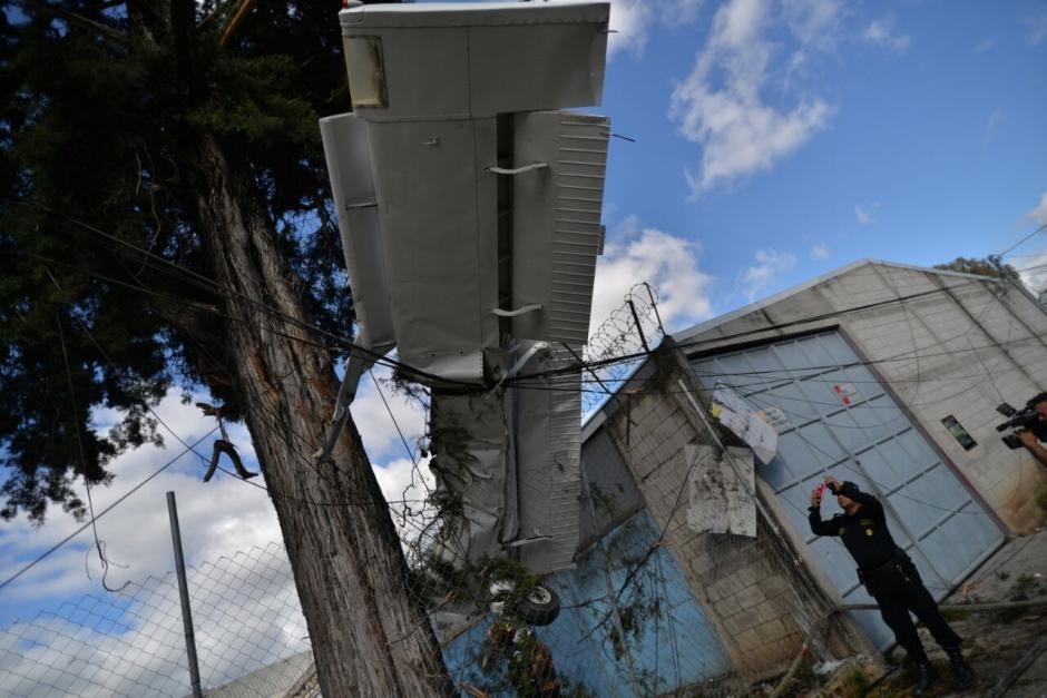 Chocó primero en un árbol y se desplomó en un parqueo. (Foto: Wilder López/Soy502)