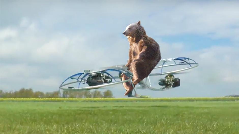 El oso es protagonista de otro video viral en esta imagen (Foto: reddit.com)