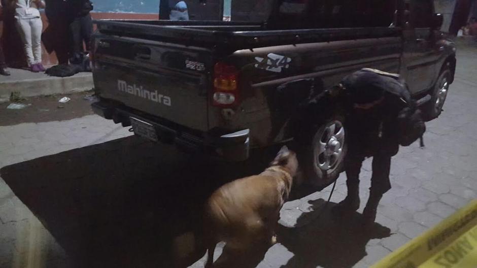 Laika llegó a Guatemala en octubre de 2012 y tiene tres años de servicio a la institución. (Foto: Policía Nacional Civil)